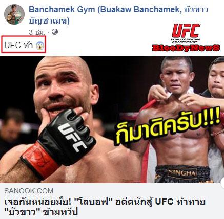 UFC-41
